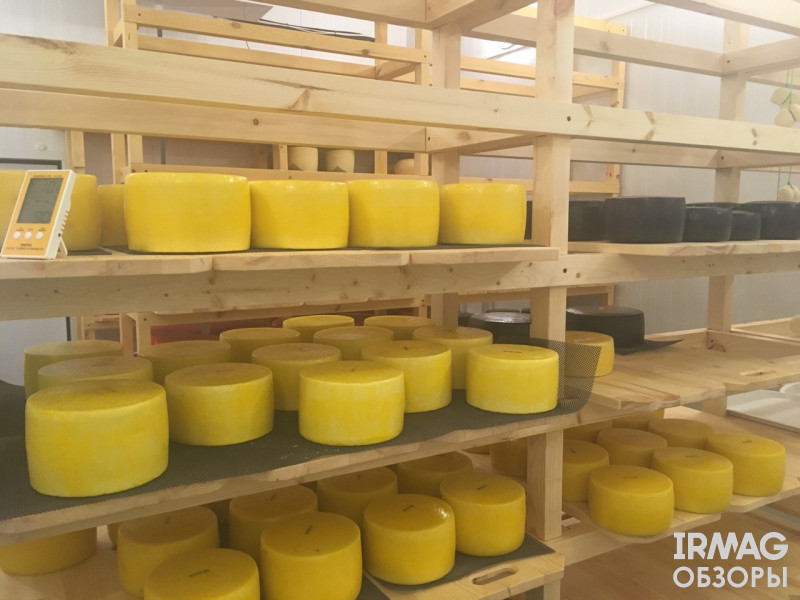 Иркутский сыроваръ сыр качотта желтый