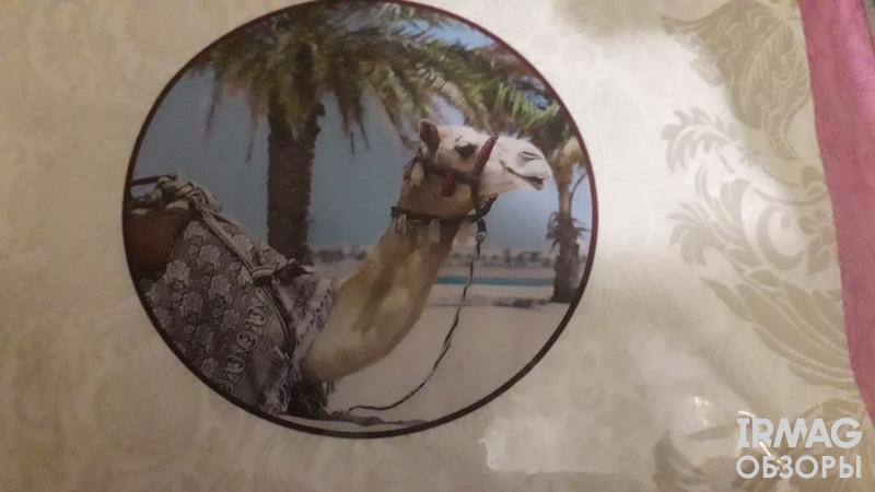 Одеяло Для Snoff1,5-спальное Классическое Верблюжья шерсть (140 х 205 см)