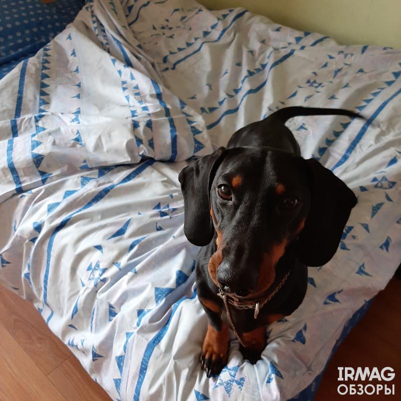 Постельное белье Bravo 2-спальное Макси Скандинавия
